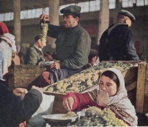 ברית המועצות בשנות ה-50